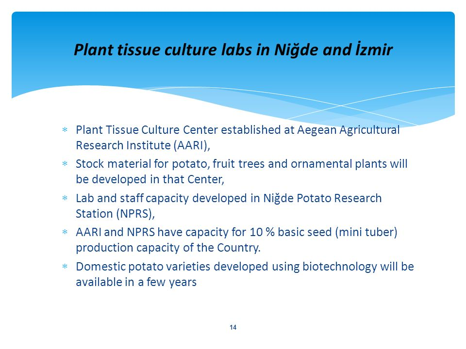 Plant Tissue Culture Center established at Aegean Agricultural Research Institute (AARI), Stock material for potato, fruit trees and ornamental plants