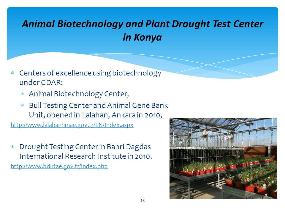 Centers of excellence using biotechnology under GDAR: Animal Biotechnology Center, Bull Testing Center and Animal Gene Bank Unit, opened in Lalahan, A