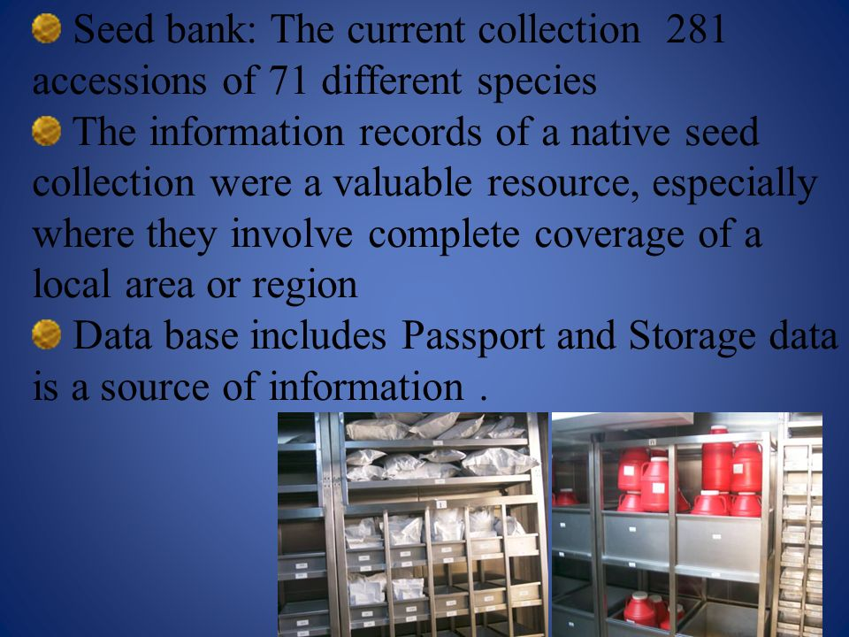 Seed bank: The current collection 281 accessions of 71 different species The information records of a native seed collection were a valuable resource,