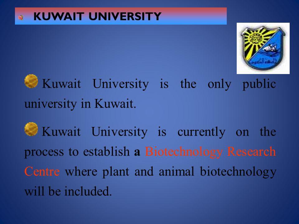 KUWAIT UNIVERSITY Kuwait University is the only public university in Kuwait. Kuwait University is currently on the process to establish a Biotechnolog