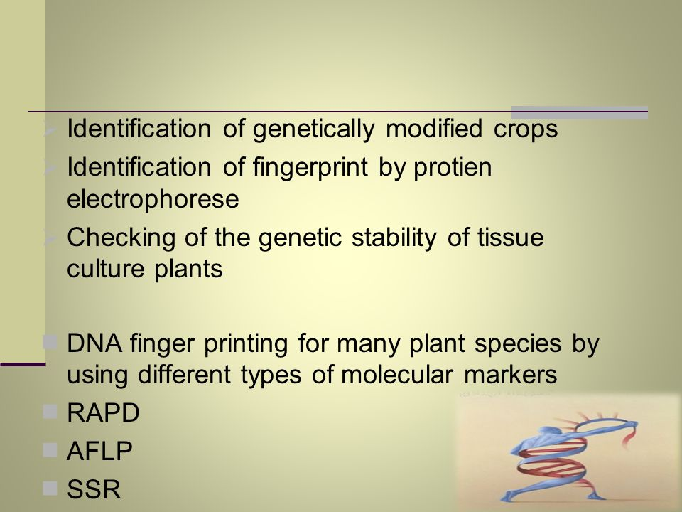 Identification of genetically modified crops Identification of fingerprint by protien electrophorese Checking of the genetic stability of tissue cultu