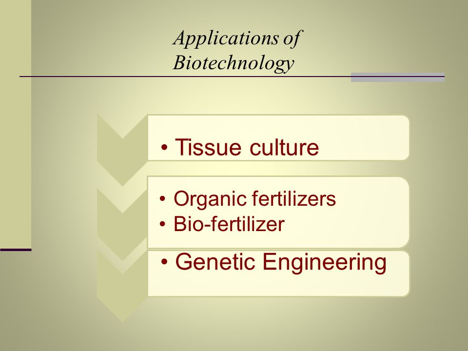 Applications of Biotechnology Tissue culture Organic fertilizers Bio-fertilizer Genetic Engineering