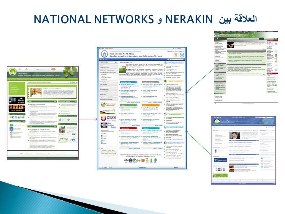 العلاقة بين NERAKIN و NATIONAL NETWORKS