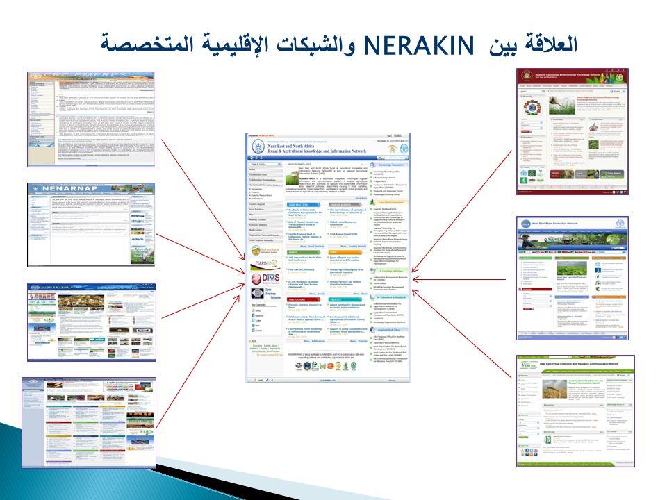 العلاقة بين NERAKIN والشبكات الإقليمية المتخصصة