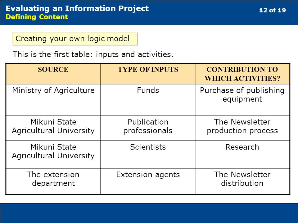 12 of 19 Evaluating an Information Project Defining Content Creating your own logic model This is the first table: inputs and activities.