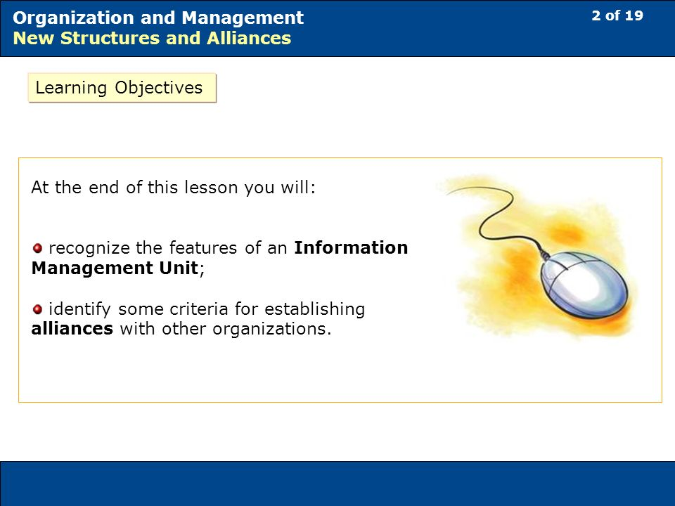 2 of 19 Organization and Management New Structures and Alliances At the end of this lesson you will: recognize the features of an Information Management Unit; identify some criteria for establishing alliances with other organizations.