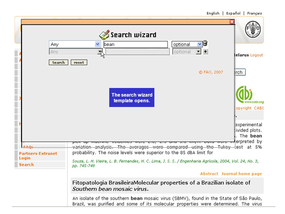 The search wizard template opens.