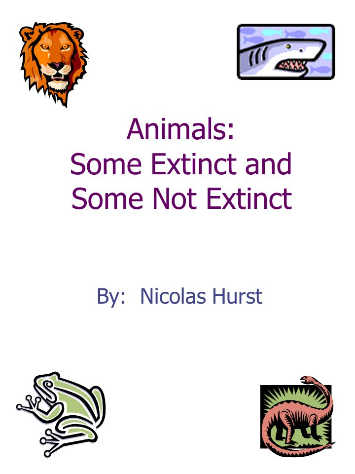 Animals: Some Extinct and Some Not Extinct By: Nicolas Hurst
