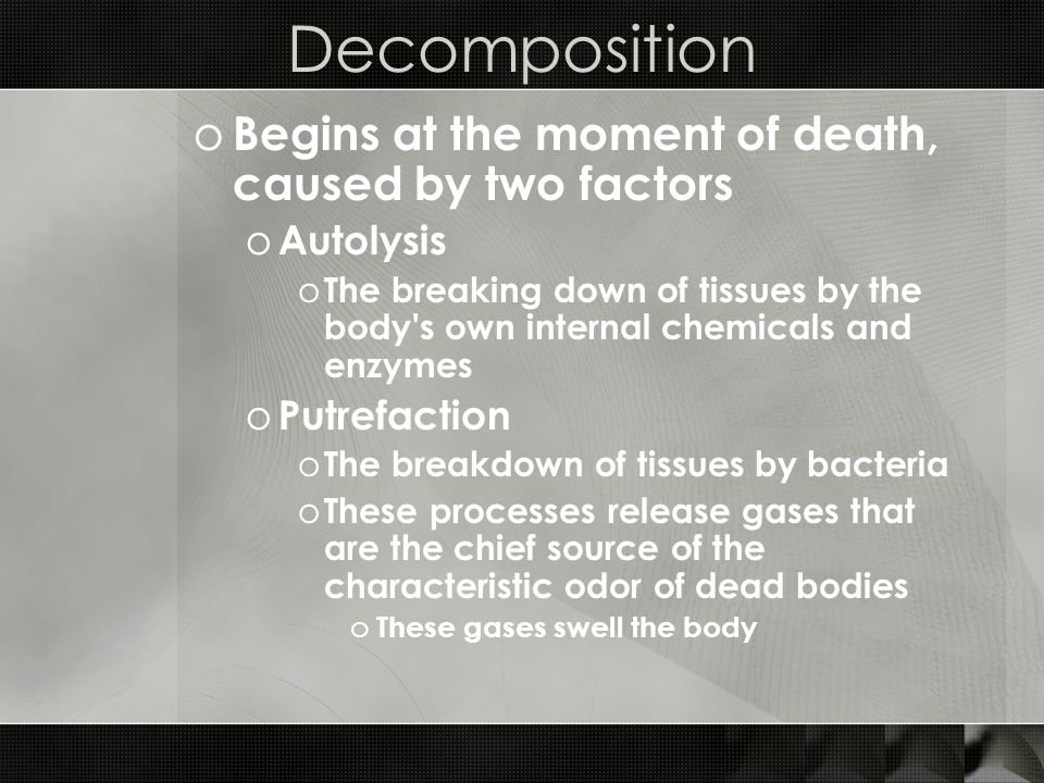 Decomposition o Begins at the moment of death, caused by two factors o Autolysis o The breaking down of tissues by the body's own internal chemicals a