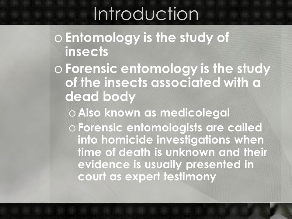 Introduction o Entomology is the study of insects o Forensic entomology is the study of the insects associated with a dead body o Also known as medico