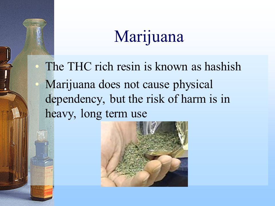 Marijuana The THC rich resin is known as hashish Marijuana does not cause physical dependency, but the risk of harm is in heavy, long term use