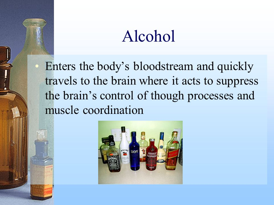 Alcohol Enters the bodys bloodstream and quickly travels to the brain where it acts to suppress the brains control of though processes and muscle coor