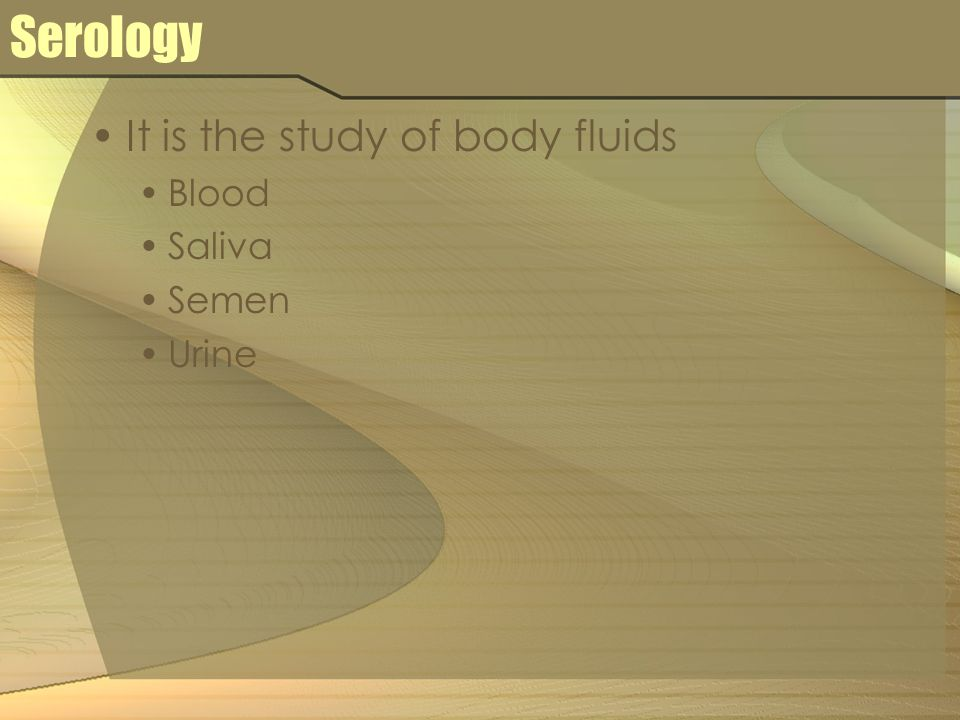 Serology It is the study of body fluids Blood Saliva Semen Urine