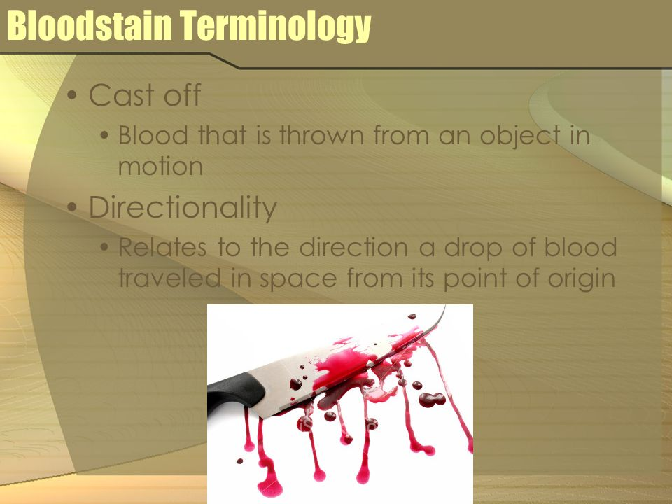Bloodstain Terminology Cast off Blood that is thrown from an object in motion Directionality Relates to the direction a drop of blood traveled in spac