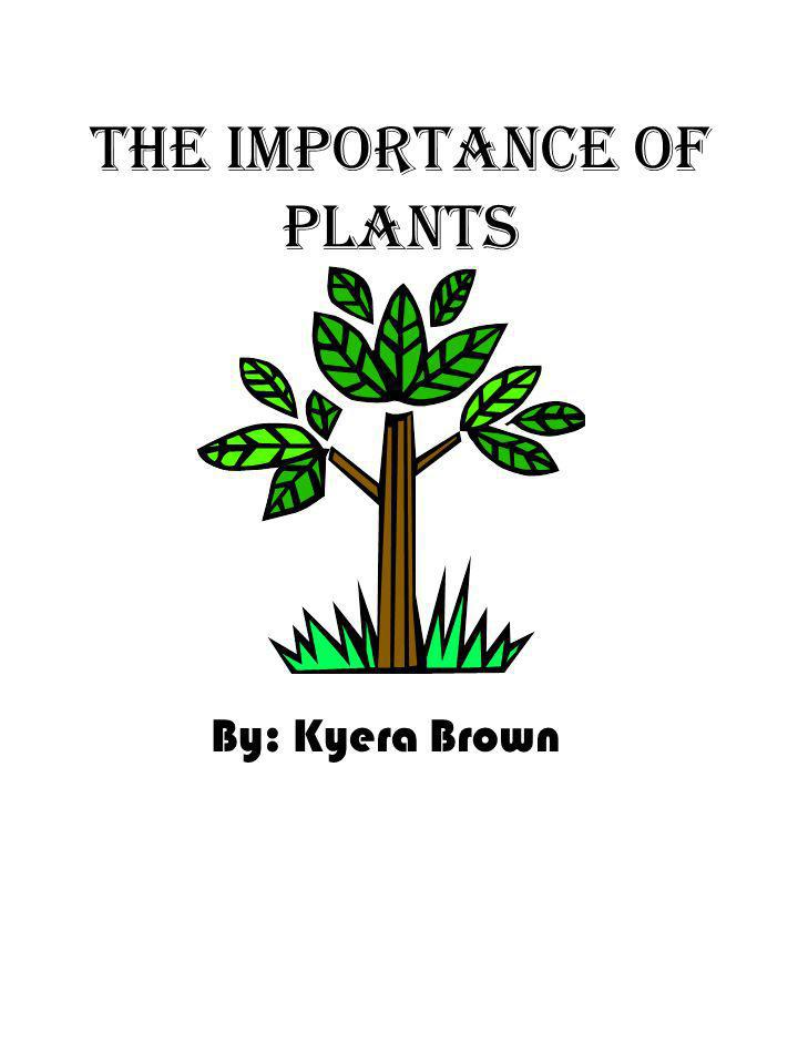 The Importance of plants By: Kyera Brown