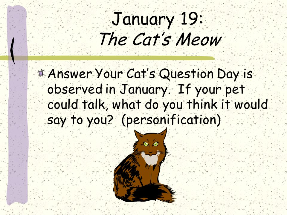 January 19: The Cats Meow Answer Your Cats Question Day is observed in January. If your pet could talk, what do you think it would say to you? (person