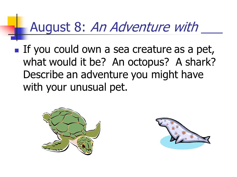 August 8: An Adventure with ___ If you could own a sea creature as a pet, what would it be? An octopus? A shark? Describe an adventure you might have