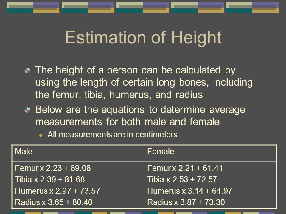 Estimation of Height The height of a person can be calculated by using the length of certain long bones, including the femur, tibia, humerus, and radi