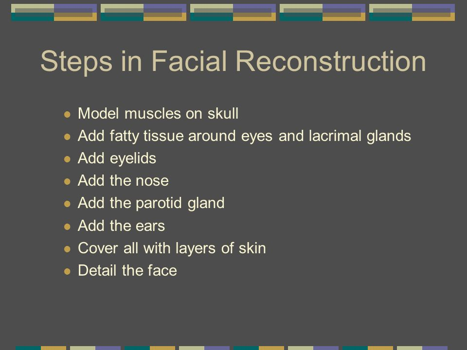 Steps in Facial Reconstruction Model muscles on skull Add fatty tissue around eyes and lacrimal glands Add eyelids Add the nose Add the parotid gland
