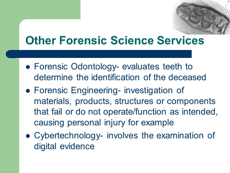 Other Forensic Science Services Forensic Odontology- evaluates teeth to determine the identification of the deceased Forensic Engineering- investigati