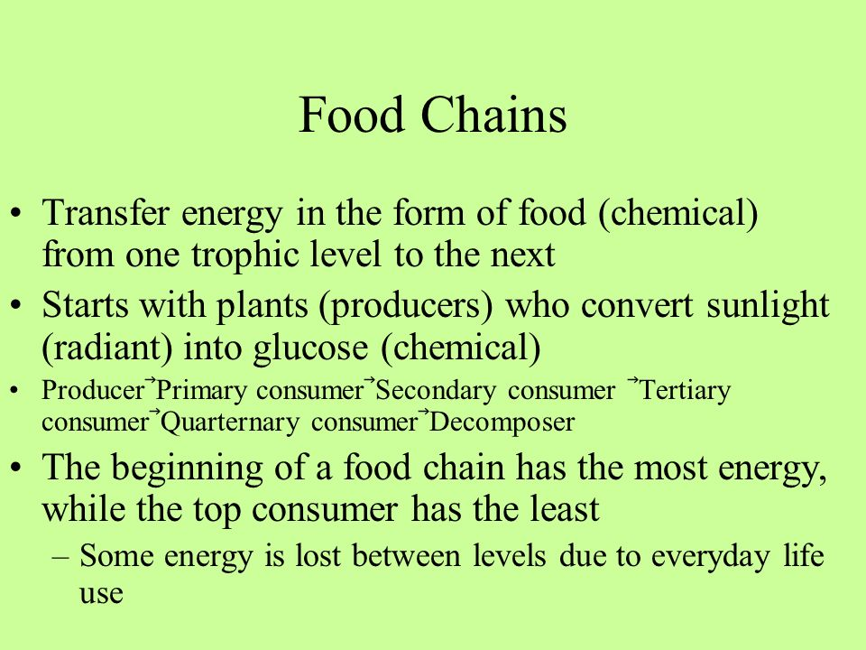 Food Chains Transfer energy in the form of food (chemical) from one trophic level to the next Starts with plants (producers) who convert sunlight (rad
