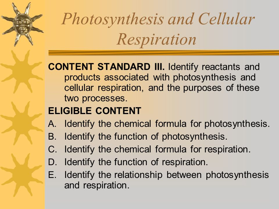 Photosynthesis and Cellular Respiration CONTENT STANDARD III. Identify reactants and products associated with photosynthesis and cellular respiration,