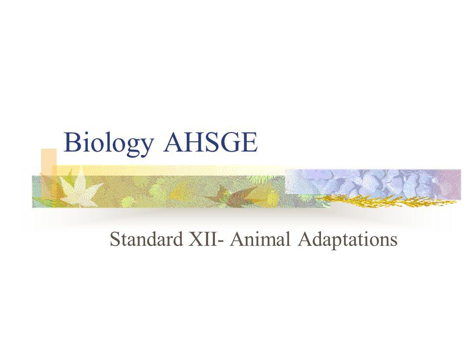 Biology AHSGE Standard XII- Animal Adaptations
