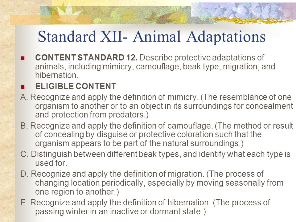 CONTENT STANDARD 12. Describe protective adaptations of animals, including mimicry, camouflage, beak type, migration, and hibernation. ELIGIBLE CONTEN