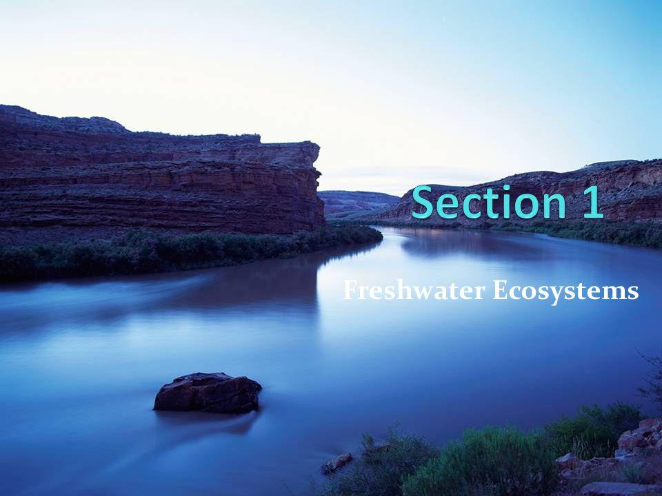 Freshwater Ecosystems