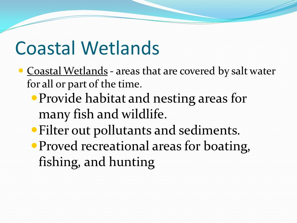 Coastal Wetlands Coastal Wetlands - areas that are covered by salt water for all or part of the time. Provide habitat and nesting areas for many fish