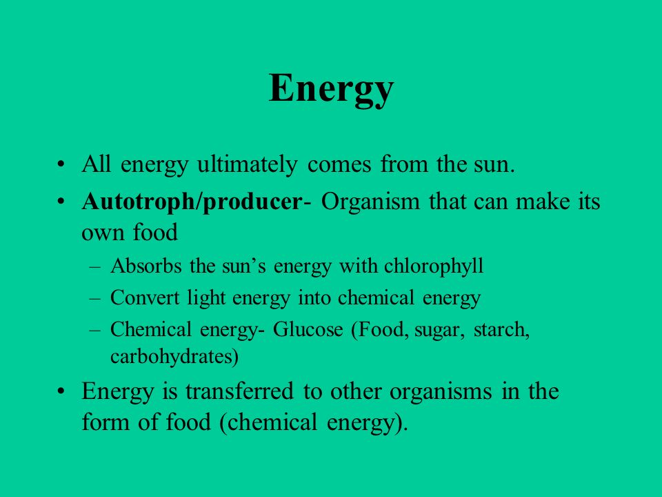 Energy All energy ultimately comes from the sun. Autotroph/producer- Organism that can make its own food –Absorbs the suns energy with chlorophyll –Co