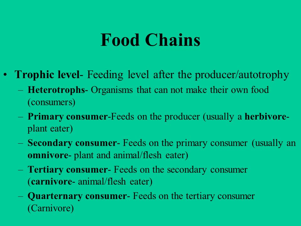 Food Chains Trophic level- Feeding level after the producer/autotrophy –Heterotrophs- Organisms that can not make their own food (consumers) –Primary