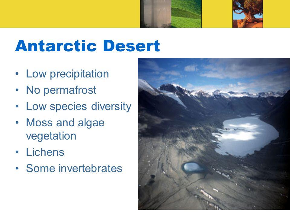 Antarctic Desert Low precipitation No permafrost Low species diversity Moss and algae vegetation Lichens Some invertebrates