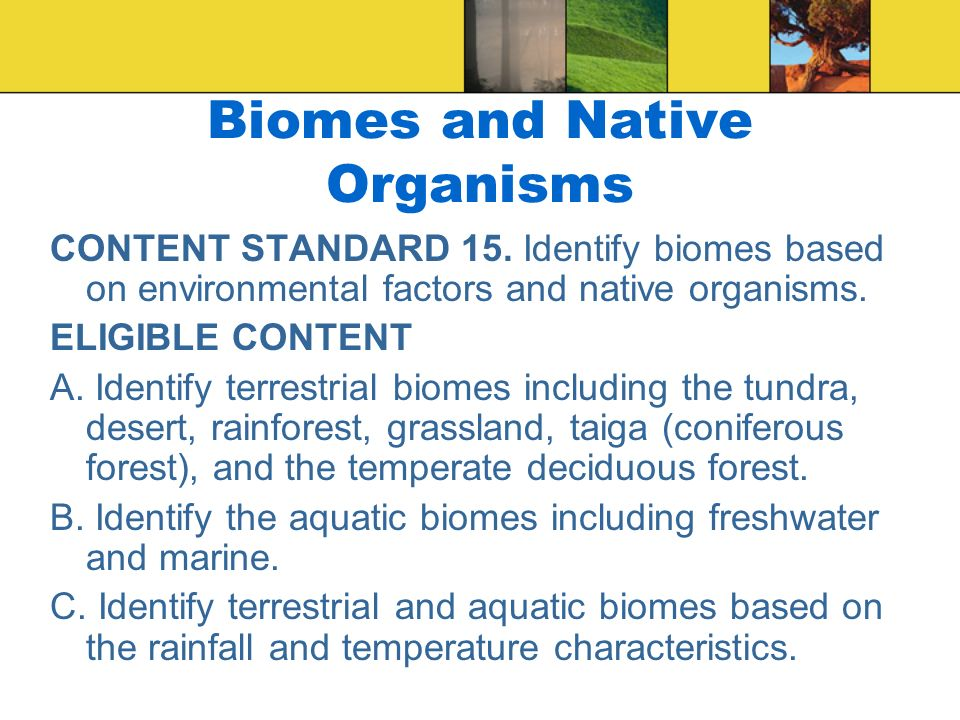 Biomes and Native Organisms CONTENT STANDARD 15. Identify biomes based on environmental factors and native organisms. ELIGIBLE CONTENT A. Identify ter