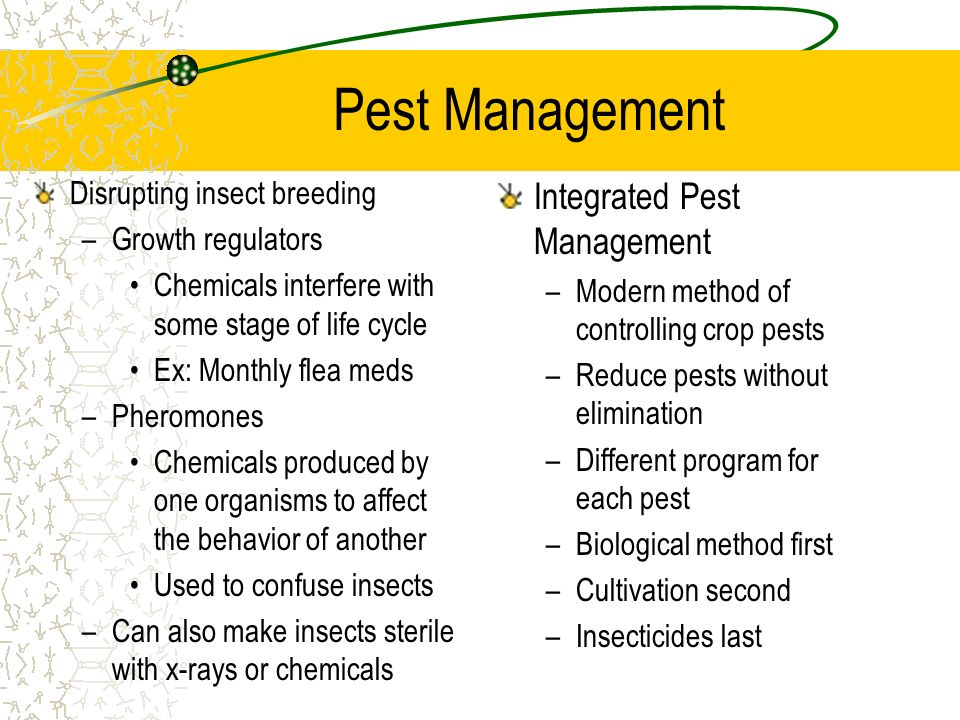 Pest Management Disrupting insect breeding –Growth regulators Chemicals interfere with some stage of life cycle Ex: Monthly flea meds –Pheromones Chem