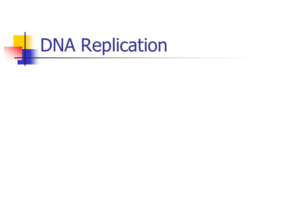 Ribonucleic Acid (RNA) Single-stranded Ribose- sugar of RNA Four bases: Adenine-Uracil Cytosine-Guanine Notice, Thymine is replaced with Uracil Transcription- Making Messenger RNA (mRNA) from DNA (Occurs in nucleolus) DNA unzips and complementary RNA nucleotides are paired up with DNA nucleotides Promoter- Signals where transcription begins (TATA box)