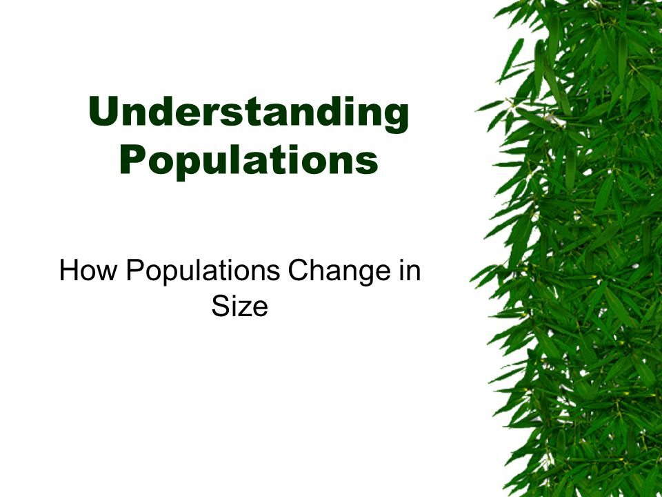 Understanding Populations How Populations Change in Size