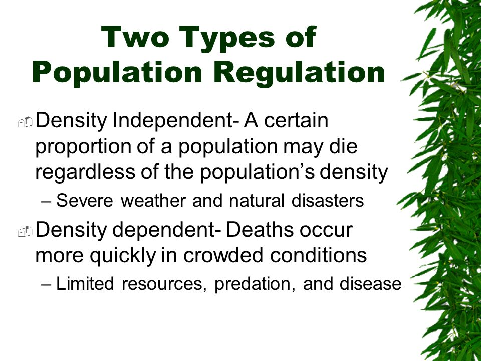 Two Types of Population Regulation Density Independent- A certain proportion of a population may die regardless of the populations density –Severe wea