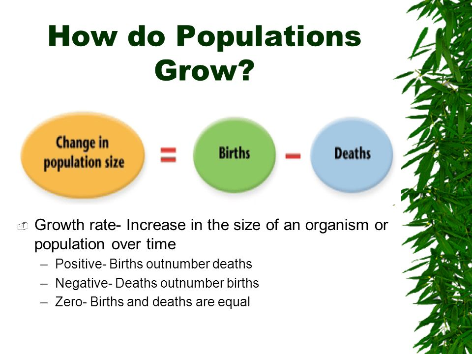 How do Populations Grow? Growth rate- Increase in the size of an organism or population over time –Positive- Births outnumber deaths –Negative- Deaths