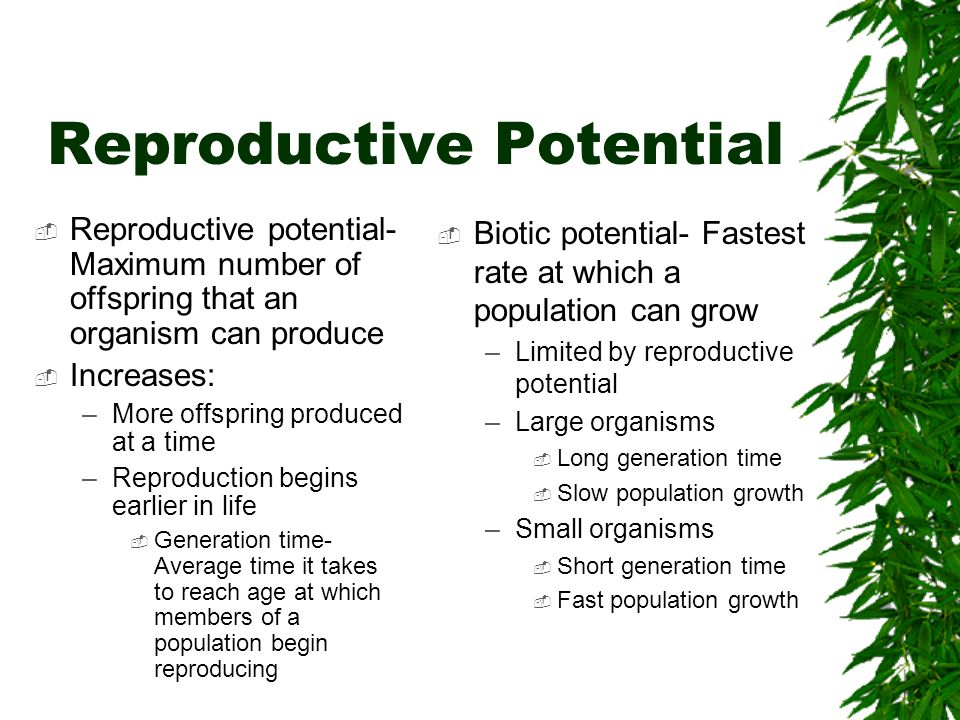 Reproductive Potential Reproductive potential- Maximum number of offspring that an organism can produce Increases: –More offspring produced at a time