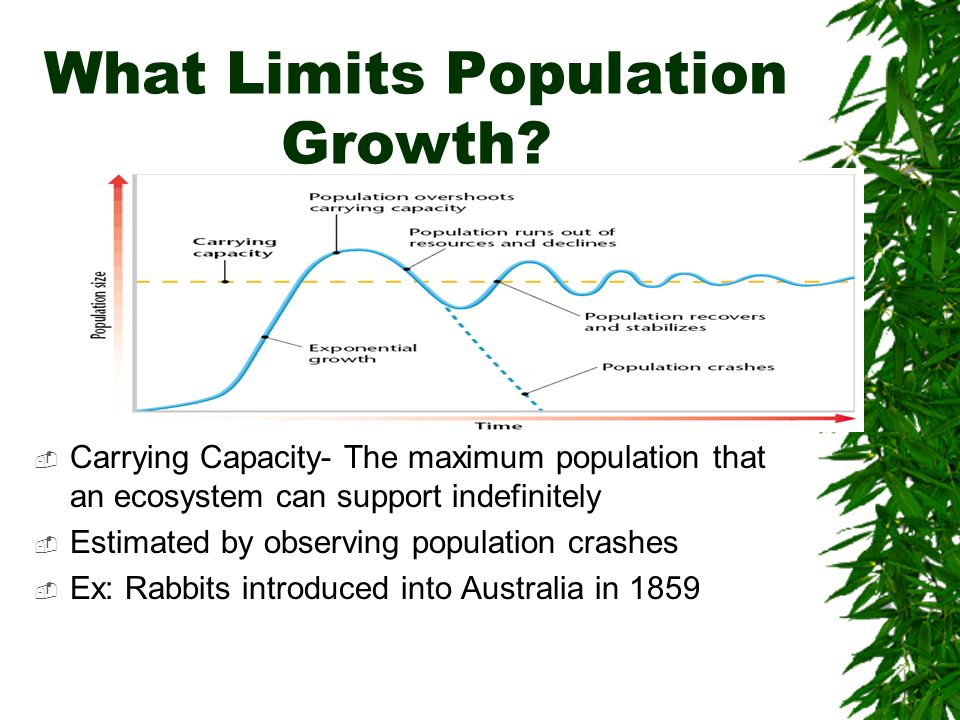 What Limits Population Growth? Carrying Capacity- The maximum population that an ecosystem can support indefinitely Estimated by observing population