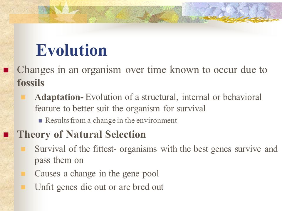Evolution Changes in an organism over time known to occur due to fossils Adaptation- Evolution of a structural, internal or behavioral feature to bett