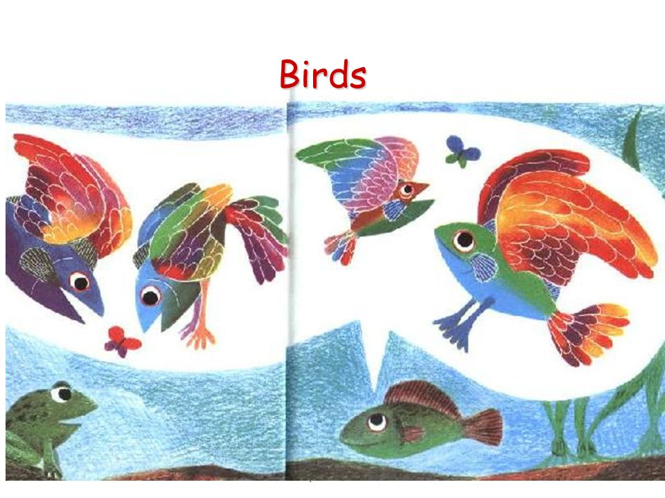 10 Birds