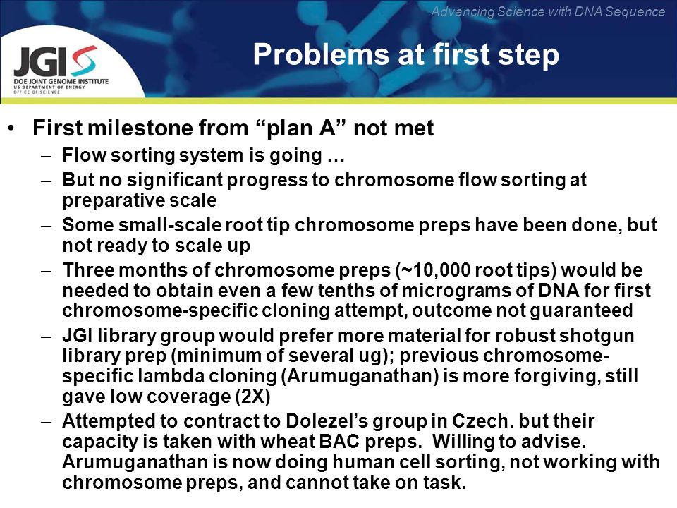 Advancing Science with DNA Sequence Problems at first step First milestone from plan A not met –Flow sorting system is going … –But no significant progress to chromosome flow sorting at preparative scale –Some small-scale root tip chromosome preps have been done, but not ready to scale up –Three months of chromosome preps (~10,000 root tips) would be needed to obtain even a few tenths of micrograms of DNA for first chromosome-specific cloning attempt, outcome not guaranteed –JGI library group would prefer more material for robust shotgun library prep (minimum of several ug); previous chromosome- specific lambda cloning (Arumuganathan) is more forgiving, still gave low coverage (2X) –Attempted to contract to Dolezels group in Czech.
