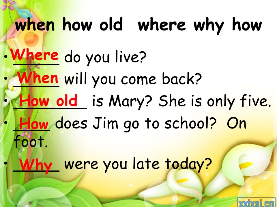 when how old where why how do you live. will you come back.