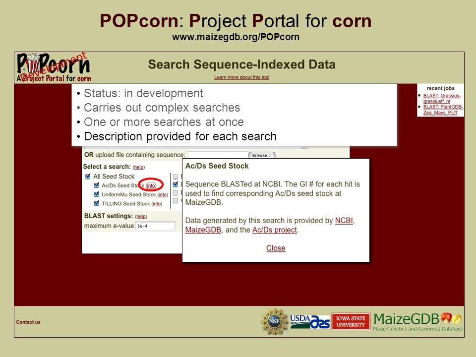21 POPcorn: Project Portal for corn   Status: in development Carries out complex searches One or more searches at once Description provided for each search Status: in development Carries out complex searches One or more searches at once Description provided for each search