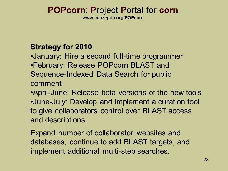 23 POPcorn: Project Portal for corn   Strategy for 2010 January: Hire a second full-time programmer February: Release POPcorn BLAST and Sequence-Indexed Data Search for public comment April-June: Release beta versions of the new tools June-July: Develop and implement a curation tool to give collaborators control over BLAST access and descriptions.