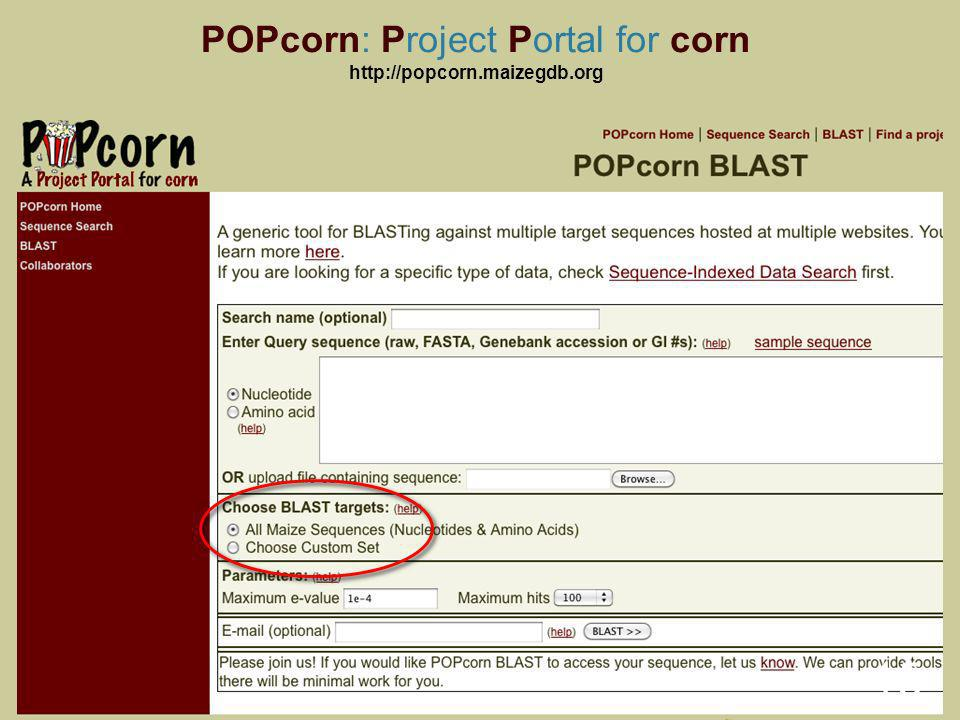POPcorn: Project Portal for corn   15