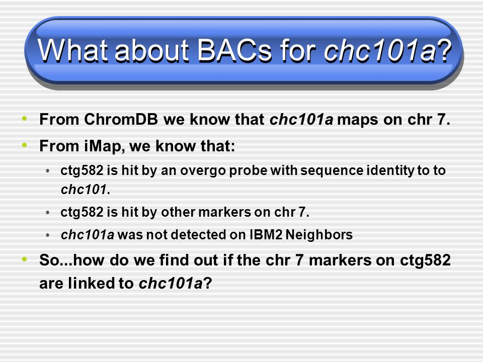 From ChromDB we know that chc101a maps on chr 7. From iMap, we know that: ctg582 is hit by an overgo probe with sequence identity to to chc101. ctg582