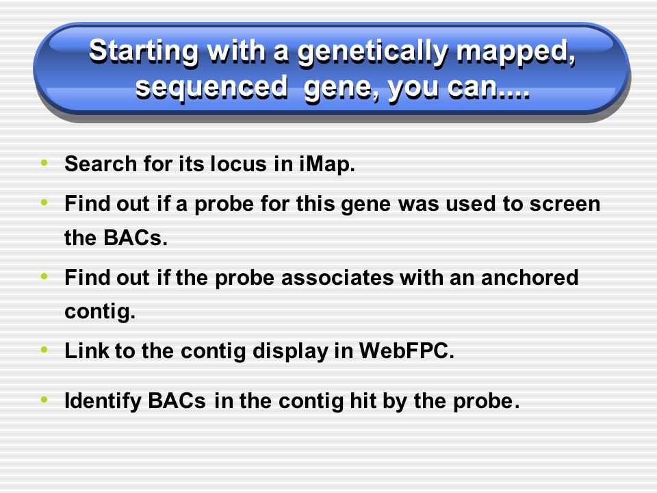 Starting with a genetically mapped, sequenced gene, you can.... Search for its locus in iMap. Find out if a probe for this gene was used to screen the